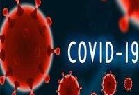 تعداد مبتلایان به ویروس دلتا بین افراد واکسینه شده بیشتر است