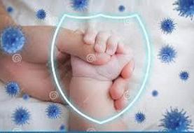 انتقال آنتی بادی از مادر به نوزاد با تزریق واکسن کووید ۱۹