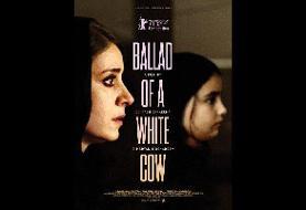 «قصیده گاو سفید» به ادینبورگ اسکاتلند دعوت شد