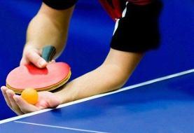 یک ایرانی مربی تیم ملی تنیس روی میز زیر ۱۱ سال آمریکا شد