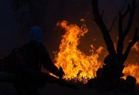 جنگلهای فیروزآباد فارس ۳ روز است میسوزد   مرگ  ۴ نفر در آتشسوزی