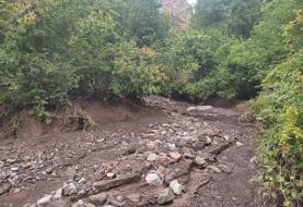 سیل در استان قزوین/ تخریب ۲۰ روستای الموت غربی