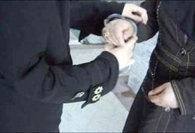 دستگیری مادر متهم به قتل فرزند ۱۰ ماهه در البرز