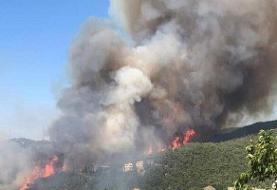 آتش سوزی در جنگل های ارسباران اطفاء شد