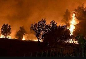 شدید شدن آتش سوزی جنگلهای کوه