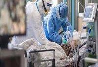 فوت  ۴۸۷ بیمار کووید۱۹ در شبانه روز گذشته/ رکوردشکنی دوباره تزریق روزانه واکسن کرونا در کشور