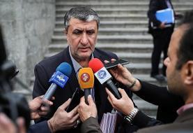 رئیس سازمان انرژی اتمی: تعدادی از دوربینهای آژانس در عملیاتهای تروریستی آسیب دیدند