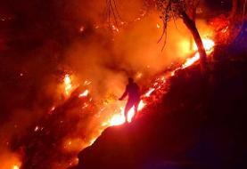آتشسوزی جنگلهای کوه