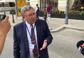 هشدار اولیانوف درباره احتمال تاخیر در ازسرگیری مذاکرات