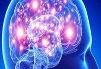 پیشگیری از زوال عقل با کنترل یک پروتئین