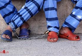 بازداشت عامل اصلی ضرب و جرح شهروندان