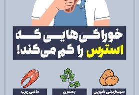 اینفوگرافیک | خوراکی&#۸۲۰۶;هایی که استرس را کم می&#۸۲۰۶;کند