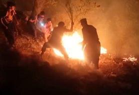 آتش سوزی جنگلهای کوه «نیر» همچنان ادامه دارد