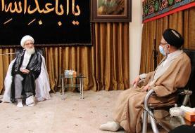 دیدار وزیر اطلاعات با آیت الله نوری همدانی