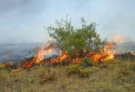 جنگلها و مراتع پیچاب باشت طعمه آتش شد