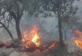 More forest fires reported in Kohgilouyeh
