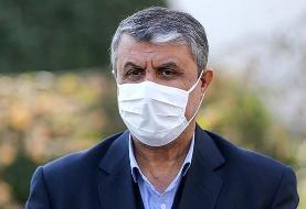 اسلامی، رئیس سازمان انرژی وارد وین شد