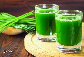 خواص فراوان سبزه گندم برای سلامتی/ چگونه سبزه گندم را مصرف کنیم؟