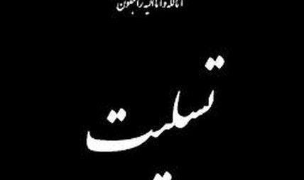 پیام تسلیت وزیر بهداشت به درگذشت نوجوان فداکار «علی لندی»