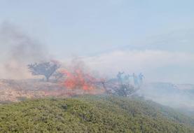 مهار آتش در عرصههای جنگلی «درازنو» کردکوی