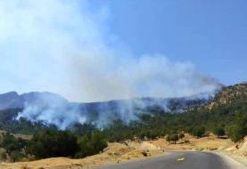 جنگلهای منطقه حفاظت شده دیل گچساران پس از ۲ روز در حال سوختن