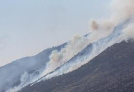 آتشسوزی در جنگلهای کوه سفید لنده