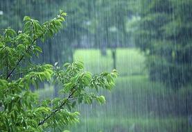 بارش باران در چند استان تا آخر هفته | وزش باد شدید در نوار شرقی | ...